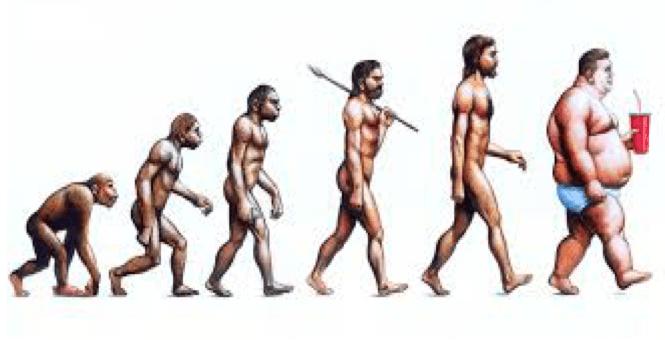 Oergezond in één ochtend- De aap met een buikje, evolutionaire kijk op gezondheid