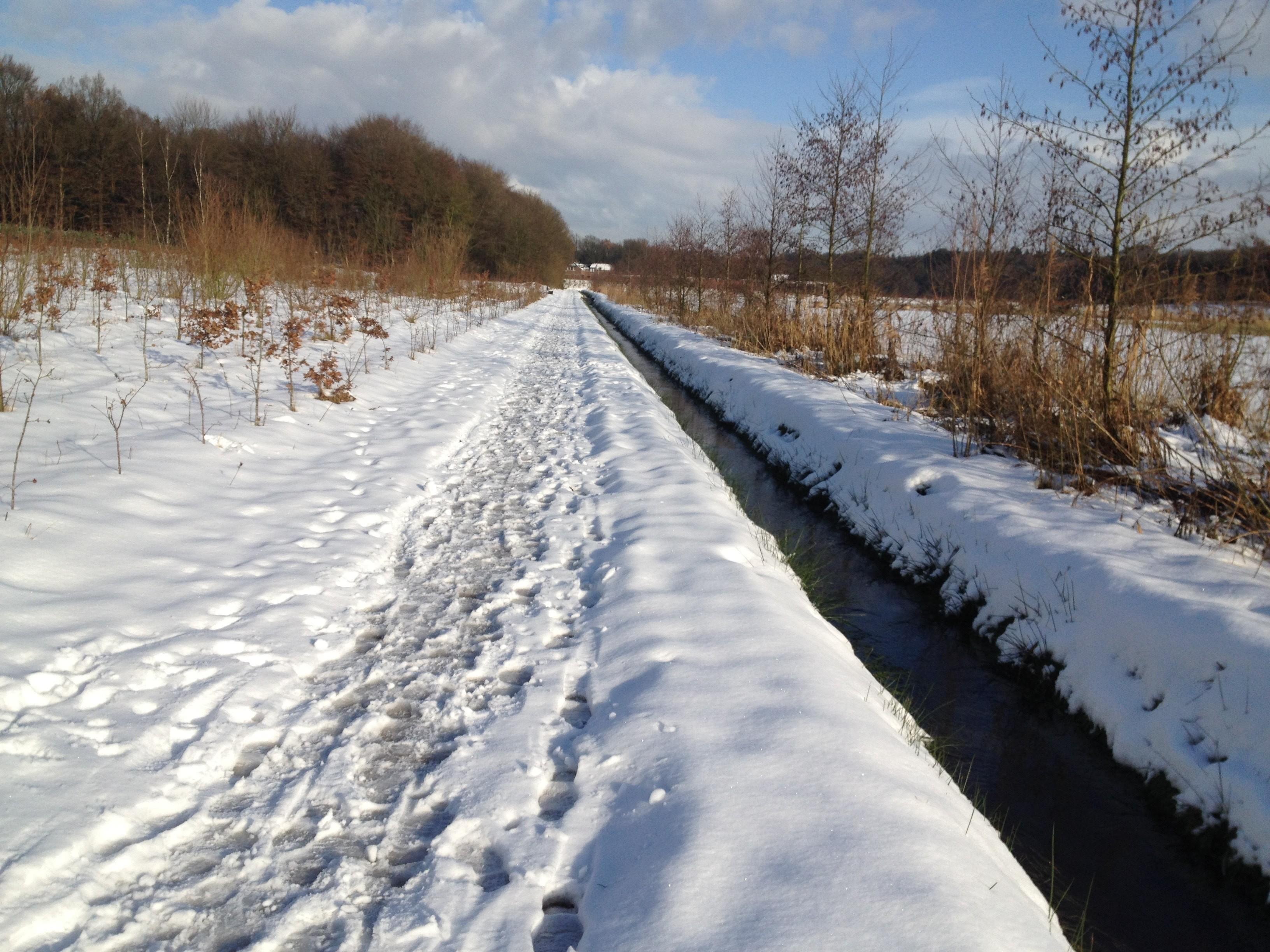 Winter wandeling - lifefullness Coaching