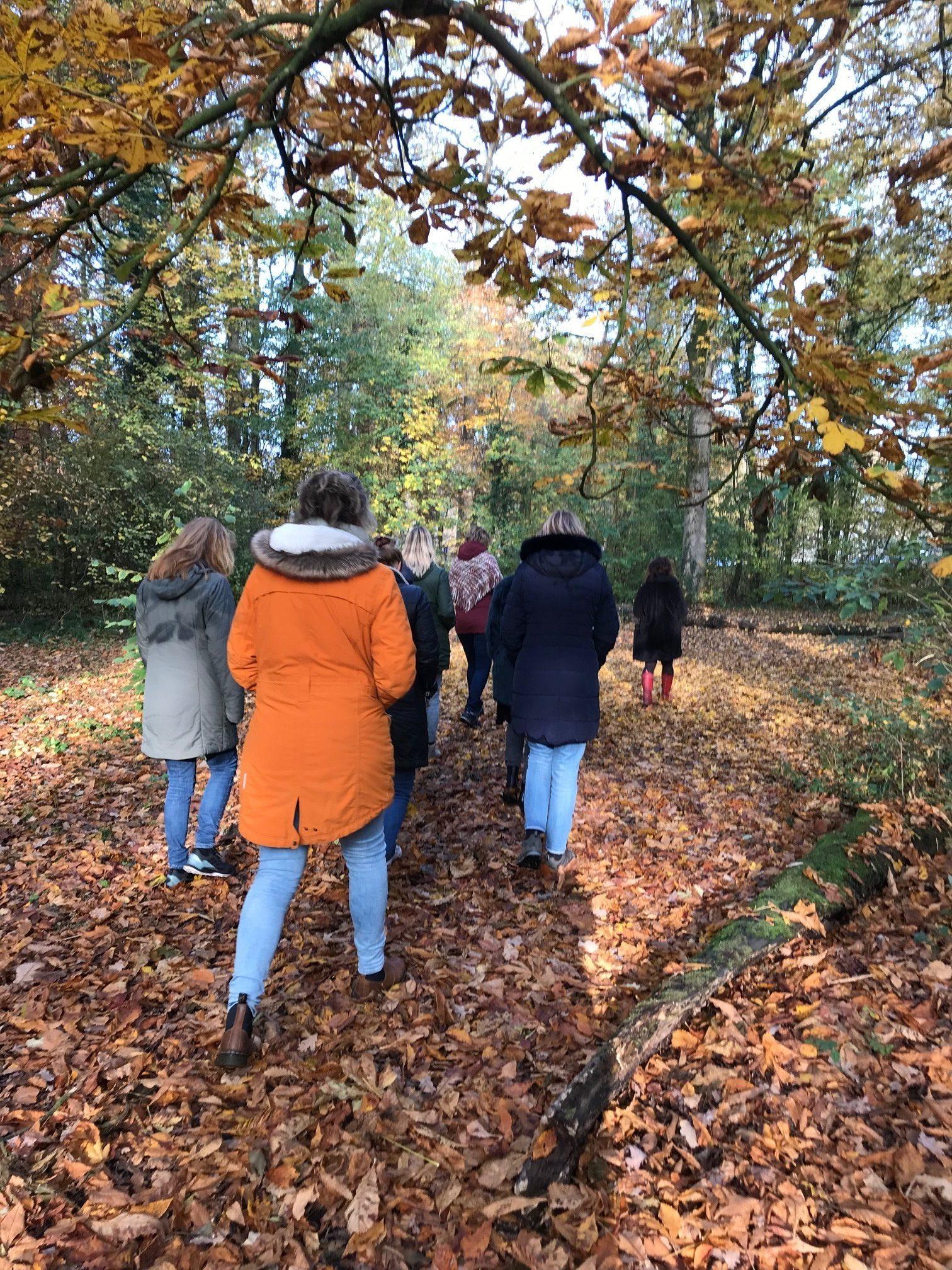 Mindful Walk groepswandeling door het bos in herfstkleuren