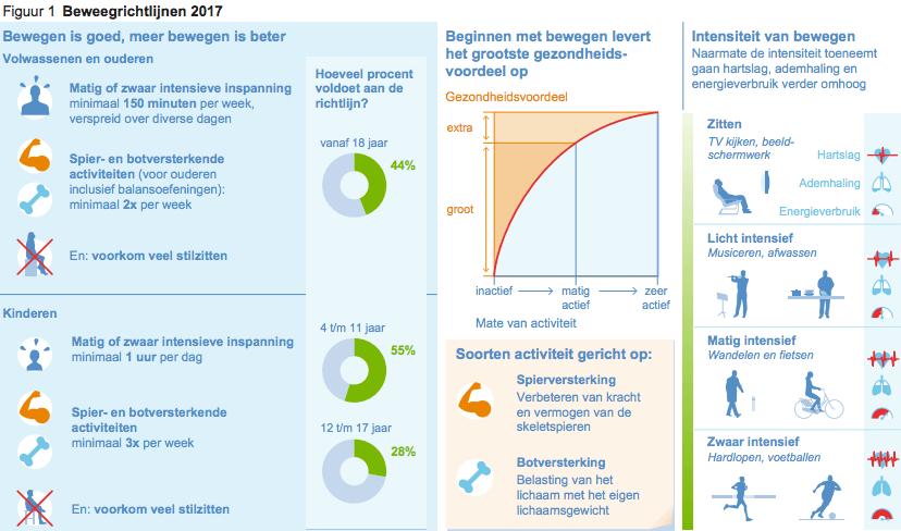 Infographic beweegrichtlijn