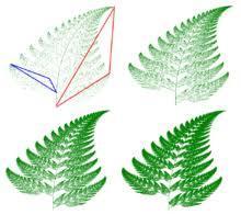 Varenblad een voorbeeld van een fractale structuur in de natuur (steeds terugkerende patronen en vormen)