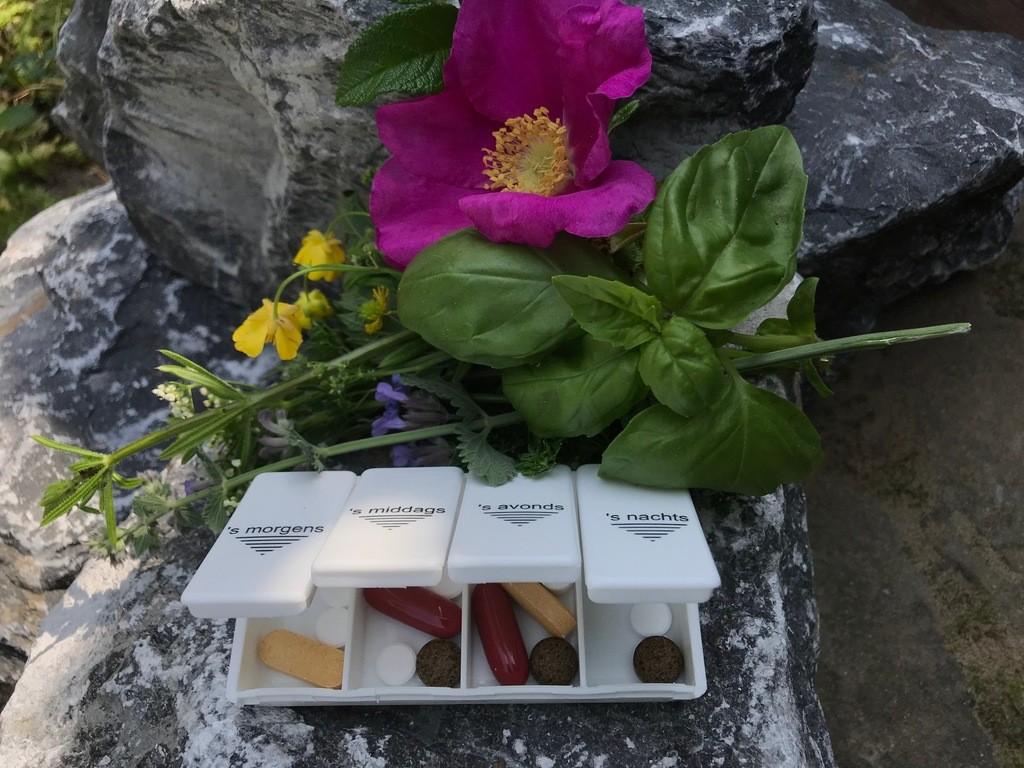 Voedingssupplementen wel of niet gebruiken: pillen dooisje met suppletie pillen en natuurlijke kruiden