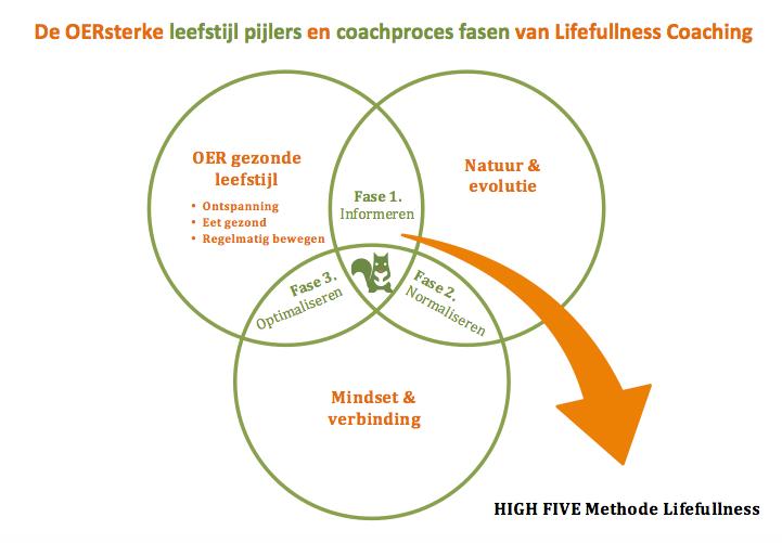 Behandeling & coaching methodiek - Lifefullness Coaching