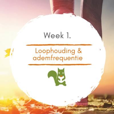 Mindful Walk Online week 1