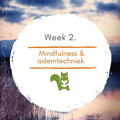 Mindful Walk Online week 2