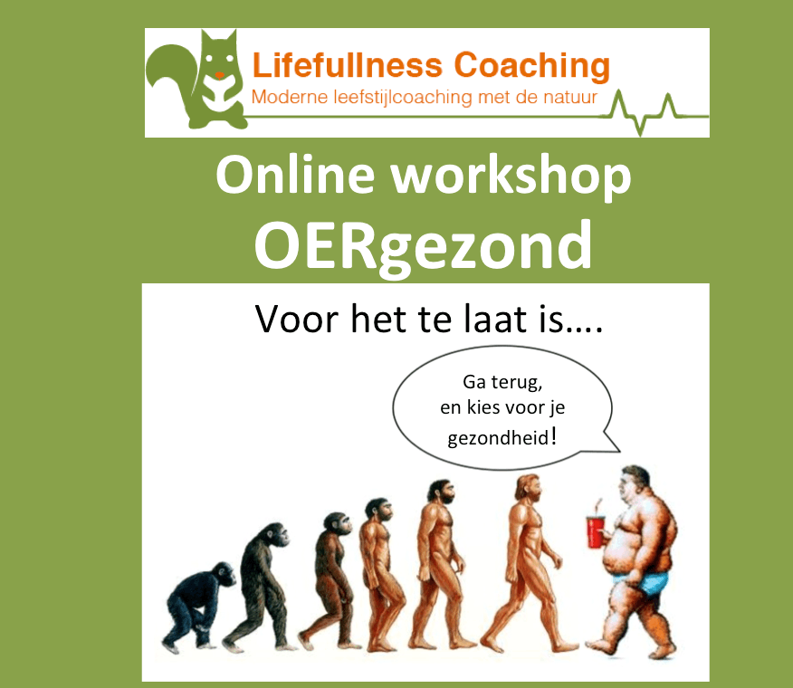 Online Workshop OER gezond - Lifefullness Coaching